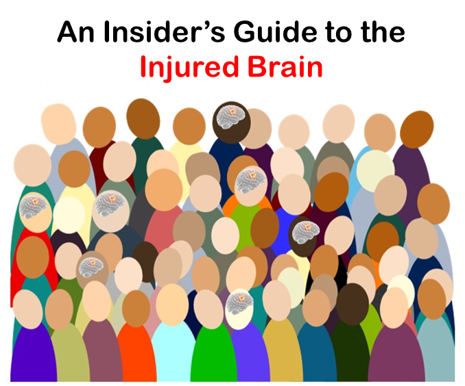 Insider's Guide to the Injured Brain